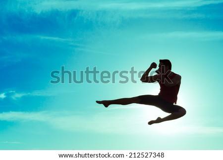 Man practicing martial arts outdoors - stock photo