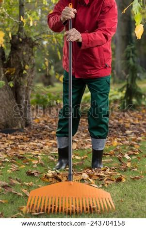 Man raking the leaves in the garden - stock photo