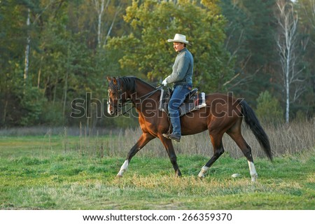 Man riding a horse in autumn landscape.