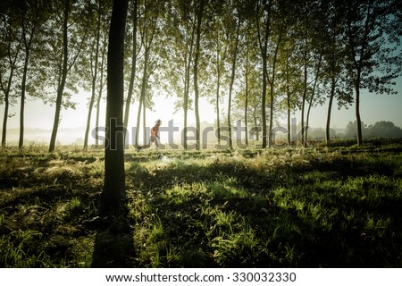 Man running alone in a forest of tree at the sunrise - stock photo