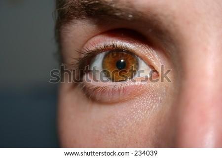 Man's Eye looking Straight Forward - stock photo