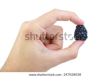Man's hand holding a blackberry on white background - stock photo
