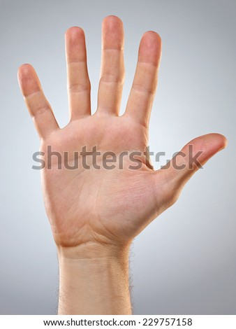 Man's Hand isolated on Grey Background. Beautiful Studio Background. Text Space