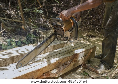 Man sawing wood chainsaw in wild forest