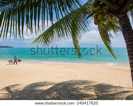 Man selling corn on the Tropical beach of Koh Samui island in Thailand - stock photo