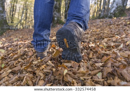 man shoes on the fallen autumn leaves