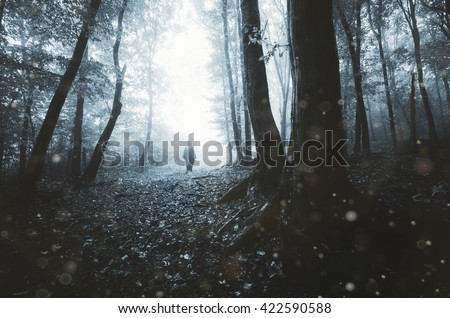 man silhouette on eerie forest path - stock photo