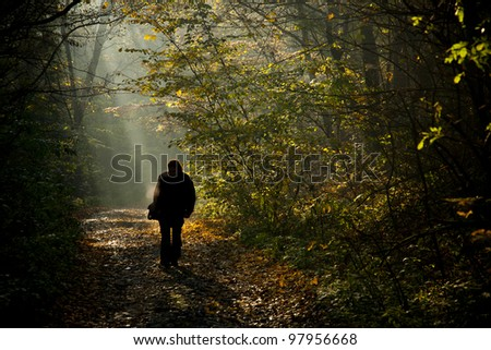 Man silhouette walking on the autumn forest road in the light of the morning sunlight. - stock photo