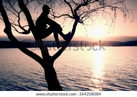 Man sit on tree. Silhouette of  lone boy with baseball cap  on branch of birch tree  in front of the sunset at shoreline.