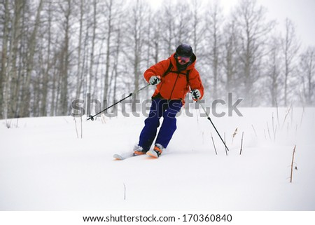 Man skiing through an aspen forest on a stormy day, Utah, USA. - stock photo