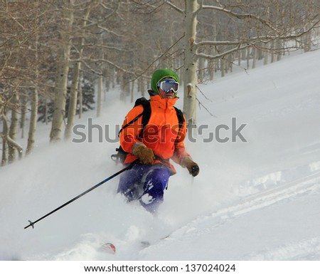 Man skiing with aspen trees in the background, Utah, USA. - stock photo