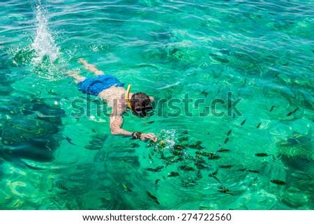 Man snorkeling at Phi Phi Island, Phuket, Thailand - stock photo