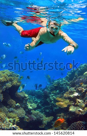 Man snorkeling in Red Sea of Egypt - stock photo