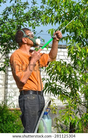 Man spraying tree in the garden - stock photo