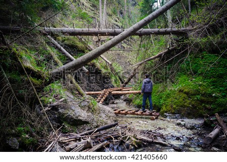 Man standing on the path through fallen trees - stock photo