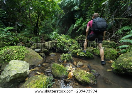 Man trekking through untouched tropical Jungle stream deep in the Rain Forest of Iriomote-jima, Okinawa, Japan - stock photo