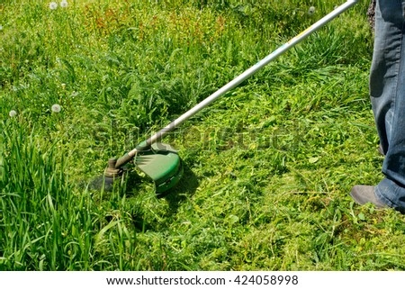 Man trimming the grass
