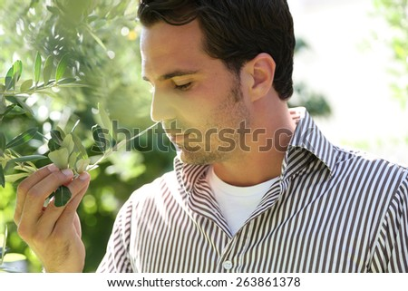 Man under an olive tree  - stock photo