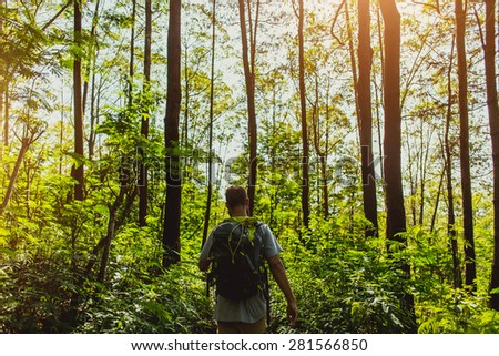 Man walk in forest with backpack - stock photo