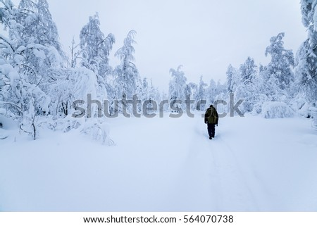 Man walking along the trail in the winter forest
