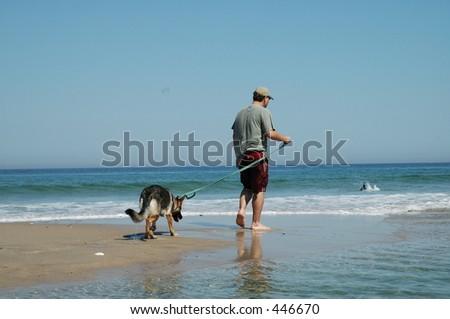 Man walking dog - stock photo