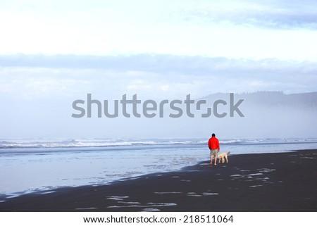 Man walking his dog on the beach - stock photo