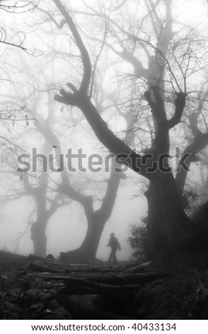 Man walking in a dark and mysterious foggy forest - stock photo