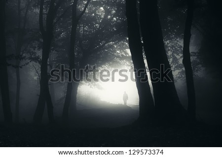 man walking in a dark forest at night - stock photo