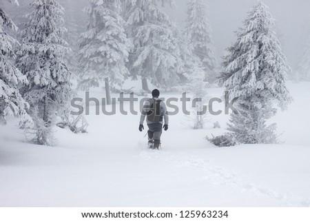 Man walking in beautiful winter landscape - stock photo