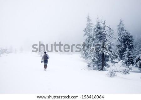 Man walking in foggy winter landscape - stock photo