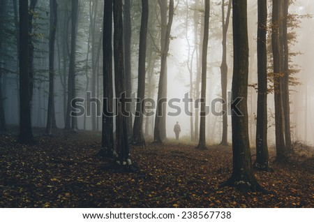 man walking in forest at morning with colorful sunrise light - stock photo
