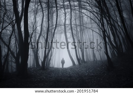 man walking on a dark path through a spooky forest - stock photo