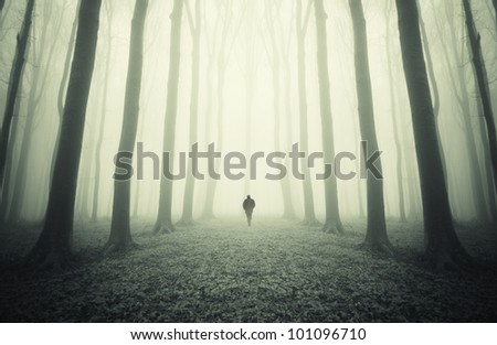 man walking through a dreamy forest - stock photo