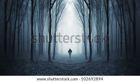 man walking through a fairytale forest - stock photo