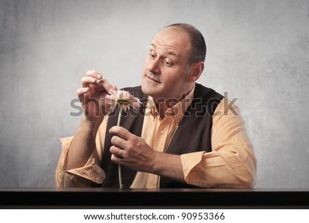 Man wavering a daisy - stock photo