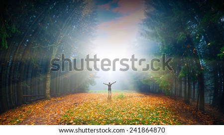 Man, who welcome bright sunlight in a magic autumn forest - stock photo