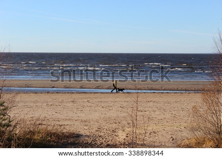Man with a dog walking on the beach - stock photo