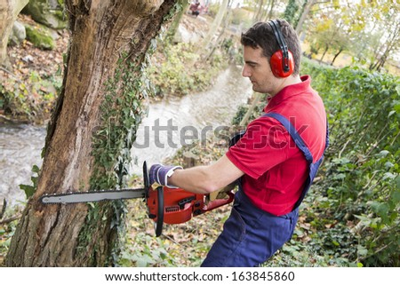 man with chainsaw, pruning a tree in day light - stock photo