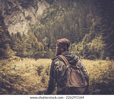 Man with hiking equipment walking in mountain forest - stock photo