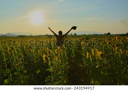 Man with raised hands enjoys with beauty world in Sunflower field.  HDR effect used in this image.