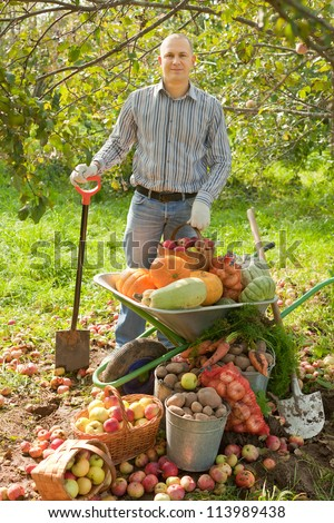 man with vegetables harvest in garden