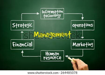 Management mind map business strategy concept - stock photo