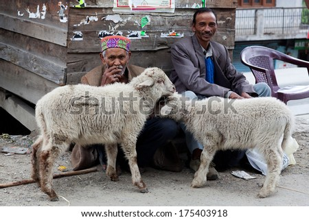 MANALI, INDIA - JUNE 08: Two unidentified men with two sheep poses for a photo on the road to Leh on June 08, 2012 in Manali, India