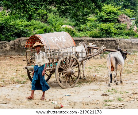 MANDALAY MAY23: Cow carriage taxi in Mingun, Mandalay, Myanmar on May 23, 2014. Mingun is a town in Sagaing Region. Its main attraction is the ruined stupa began by King Bodawpaya in 1790. - stock photo