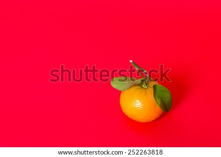 Mandarin Orange, Citrus reticulate, with green leaf, isolated on red background. Traditional symbols of abundance and good fortune during Chinese New Year celebration, as decoration, gifts. Copy Space - stock photo