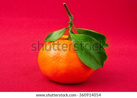 Mandarin Orange,  with green leaf, isolated on red background - stock photo