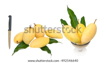 mango and  knife for paring with isolated on white background.