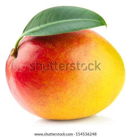 mango fruit isolated on white background  - stock photo
