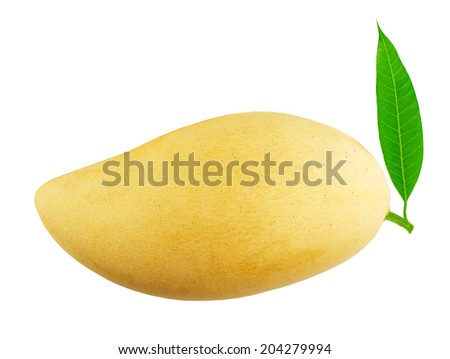 mango fruit with leaf isolated on white background - stock photo