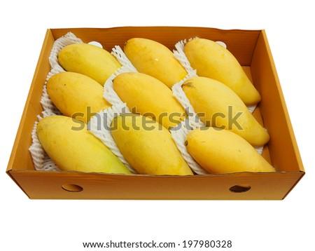mango yellow flesh is box ready to export. - stock photo